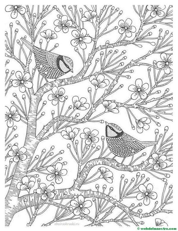 Dibujos Antiestres Dibujos Dibujos Para Imprimir Dibujos Para