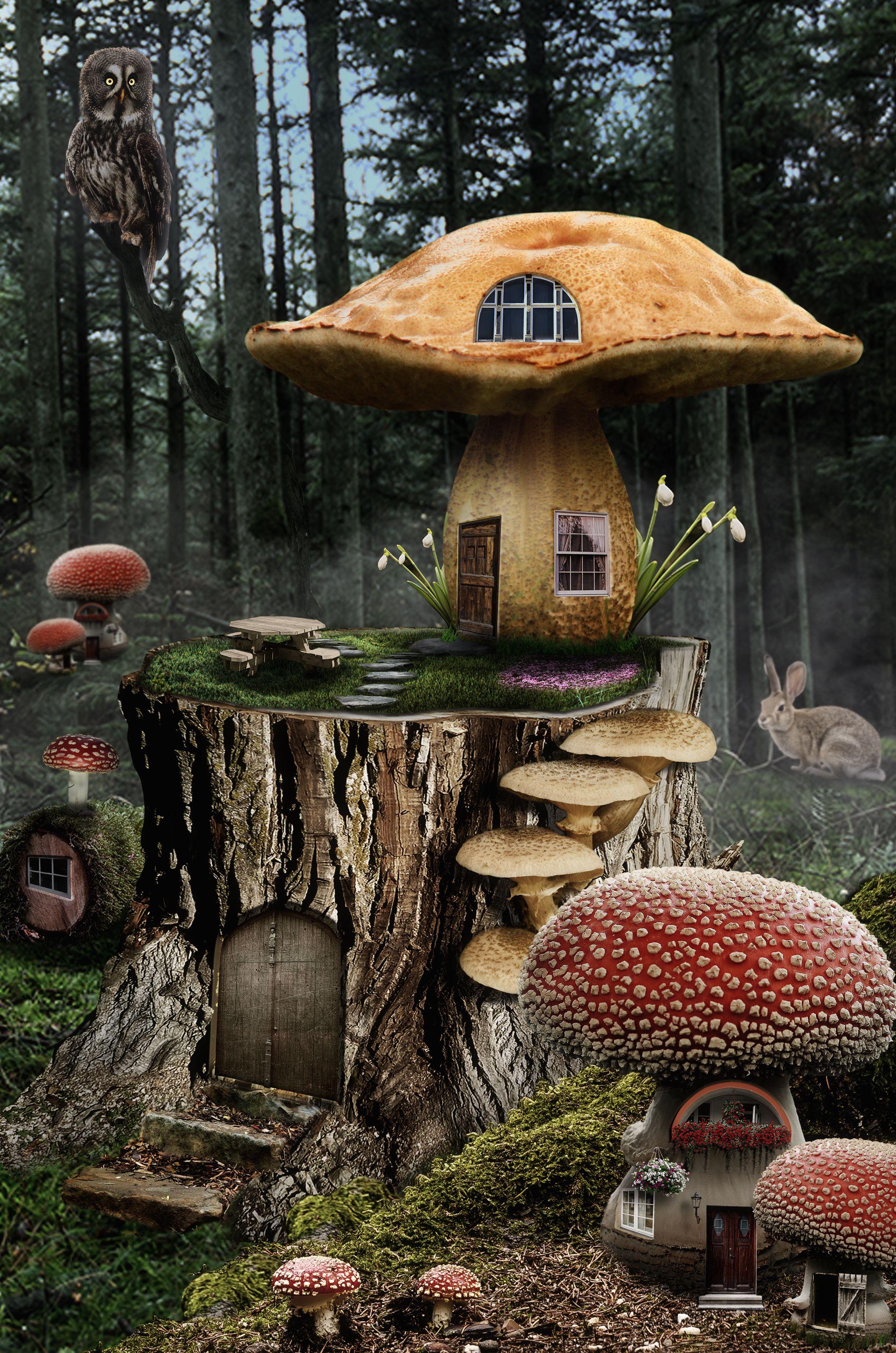 Mushroom Fairy House05 Fairy Garden Houses Fairy Houses House