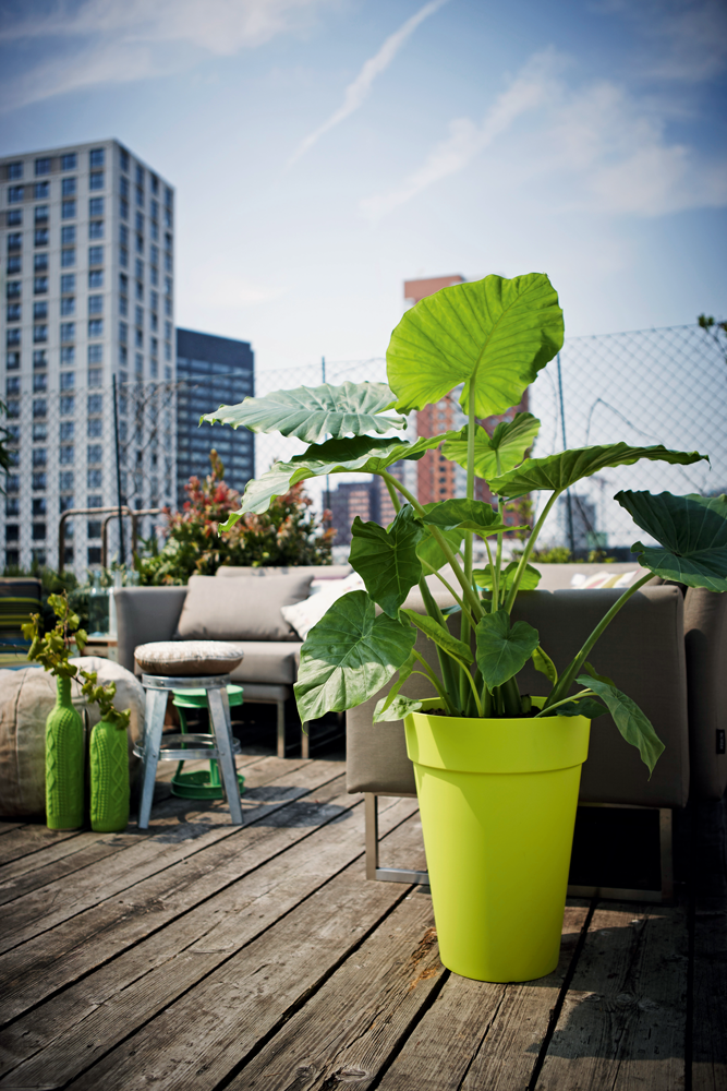 der loft urban hoch pflanztopf von elho verleiht eurem stadtgarten balkon oder eurer. Black Bedroom Furniture Sets. Home Design Ideas