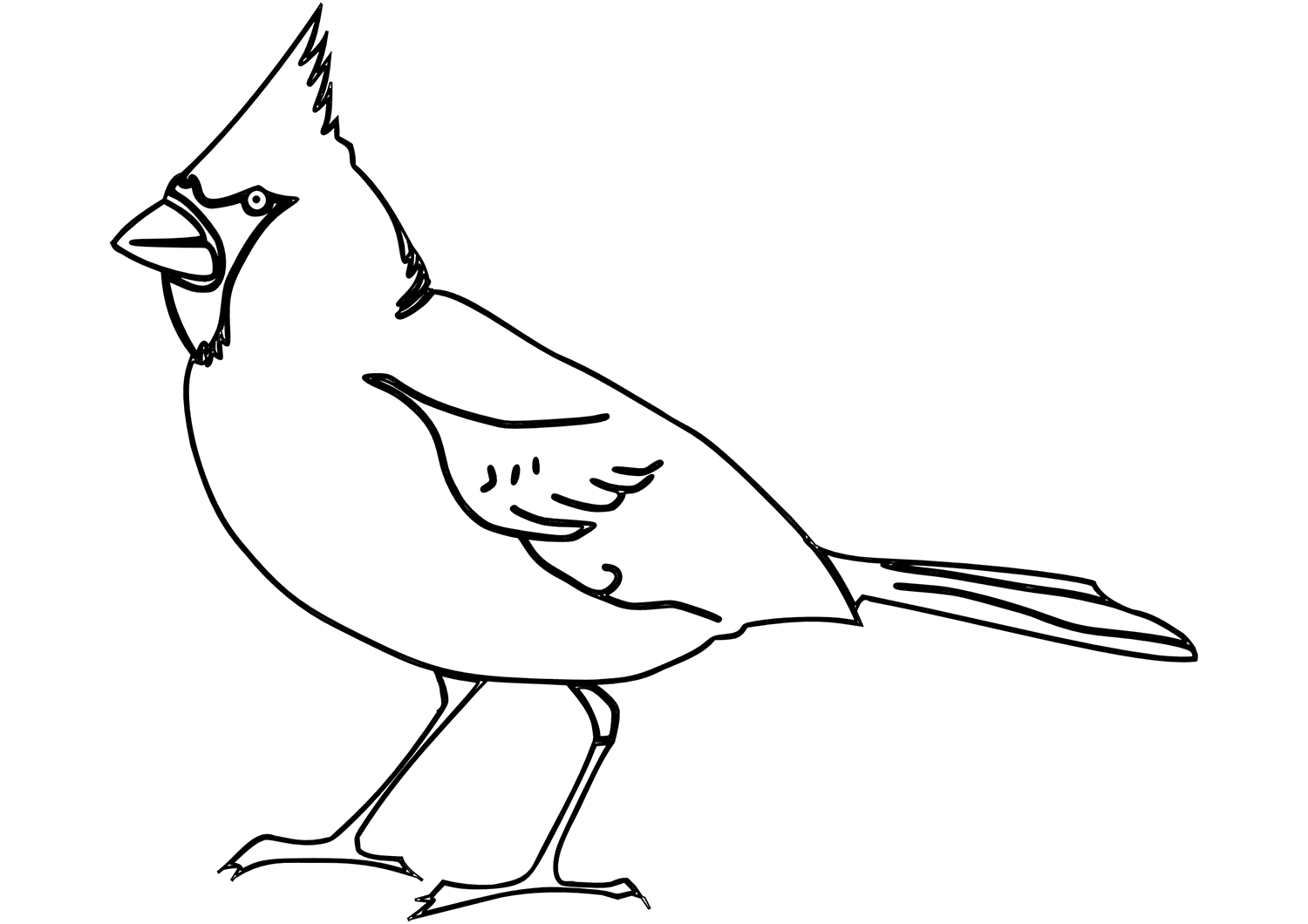 Cardinal Coloring Pages