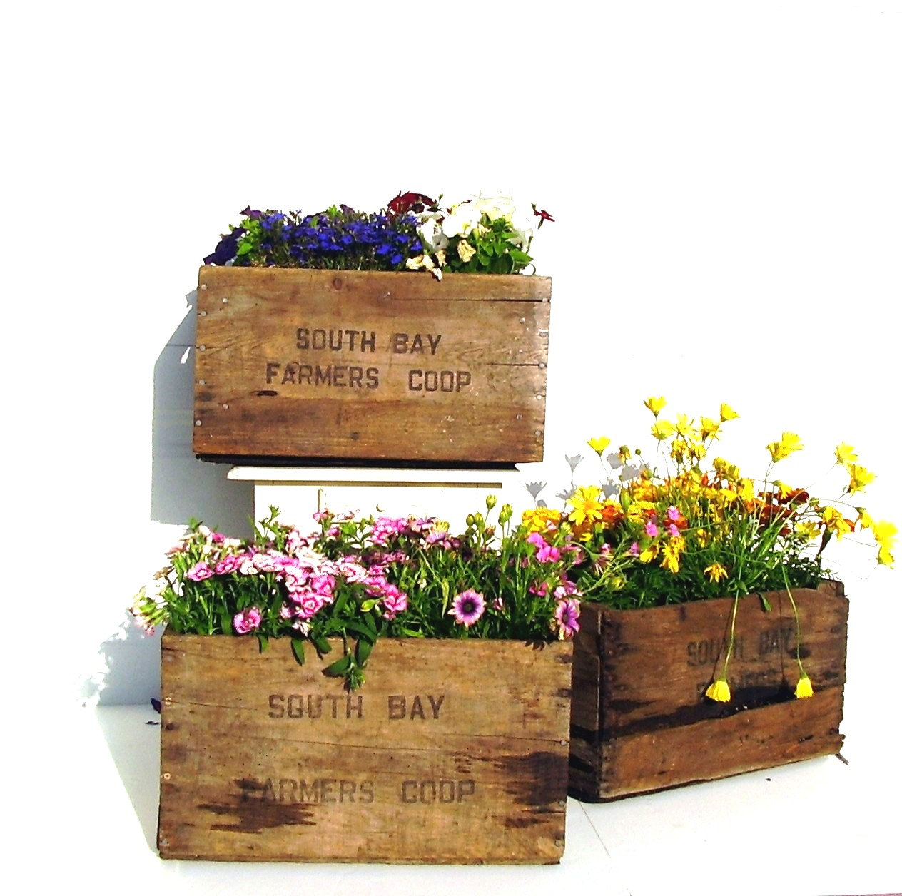 vintage wooden crate rustic flower planter box if i can find old crates that don 39 t have. Black Bedroom Furniture Sets. Home Design Ideas