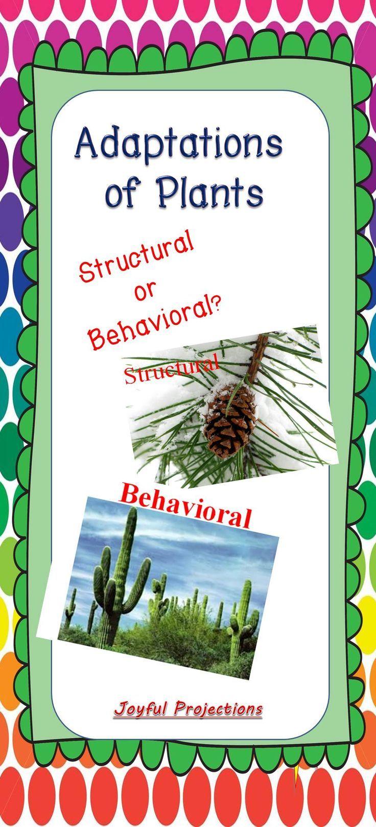 Plant Adaptations   Plant adaptations [ 1619 x 736 Pixel ]