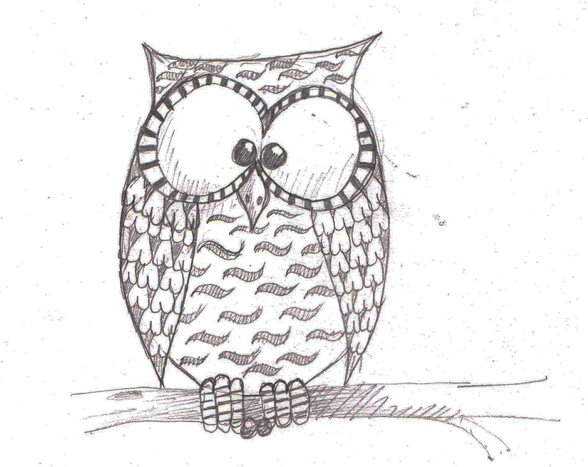 Easy owl doodle images galleries with for Owl drawing easy