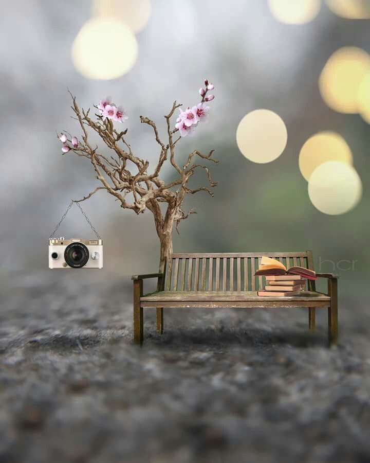 Pin By Maghfira Gusasi On Fantazi Miniature Photography Cute Photography Cute Wallpapers