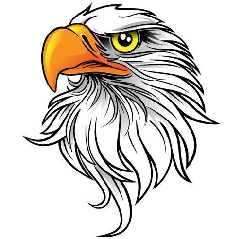 44 images of eagle mascot clipart you can use these free cliparts rh pinterest com eagle clipart with banner eagle clip art pictures