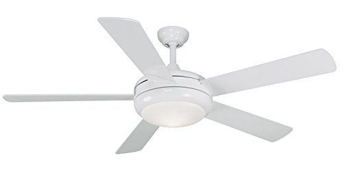 Litex e tit52ww5lkrc titan collection 52 inch ceiling fan with litex e tit52ww5lkrc titan collection 52 inch ceiling fan with remote control five aloadofball Gallery