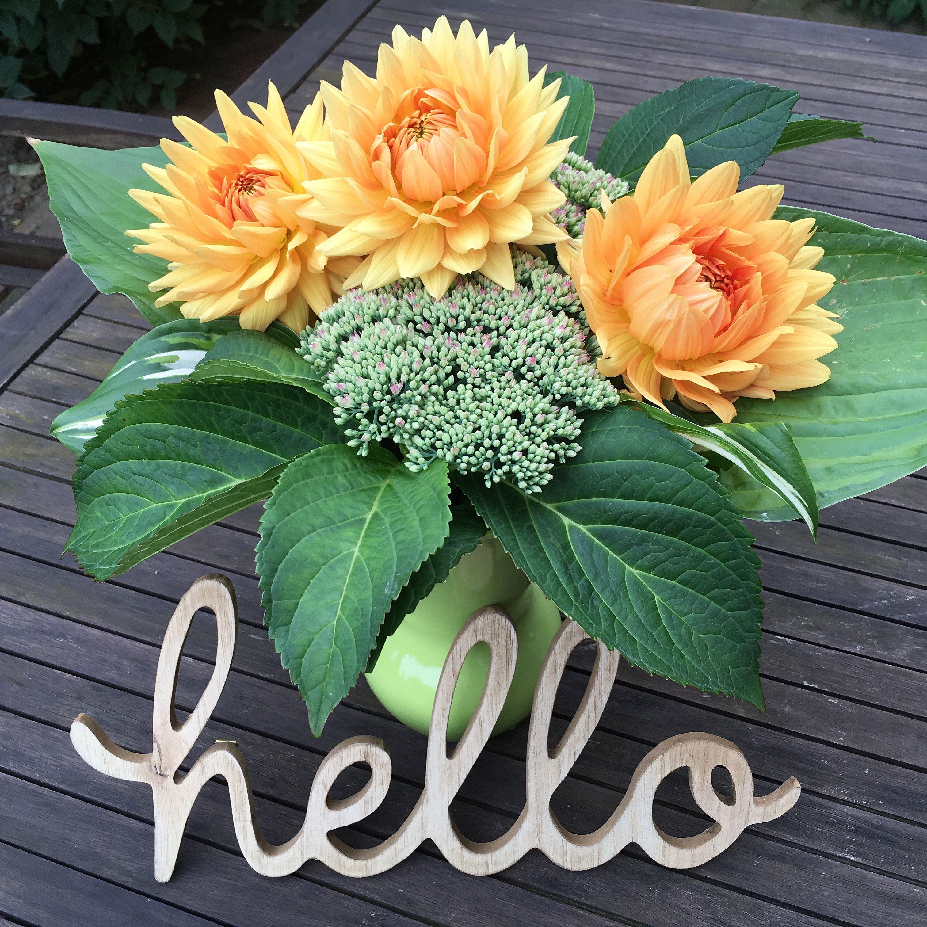 Gartenblumen · GartenblumenGarten Pflanzen