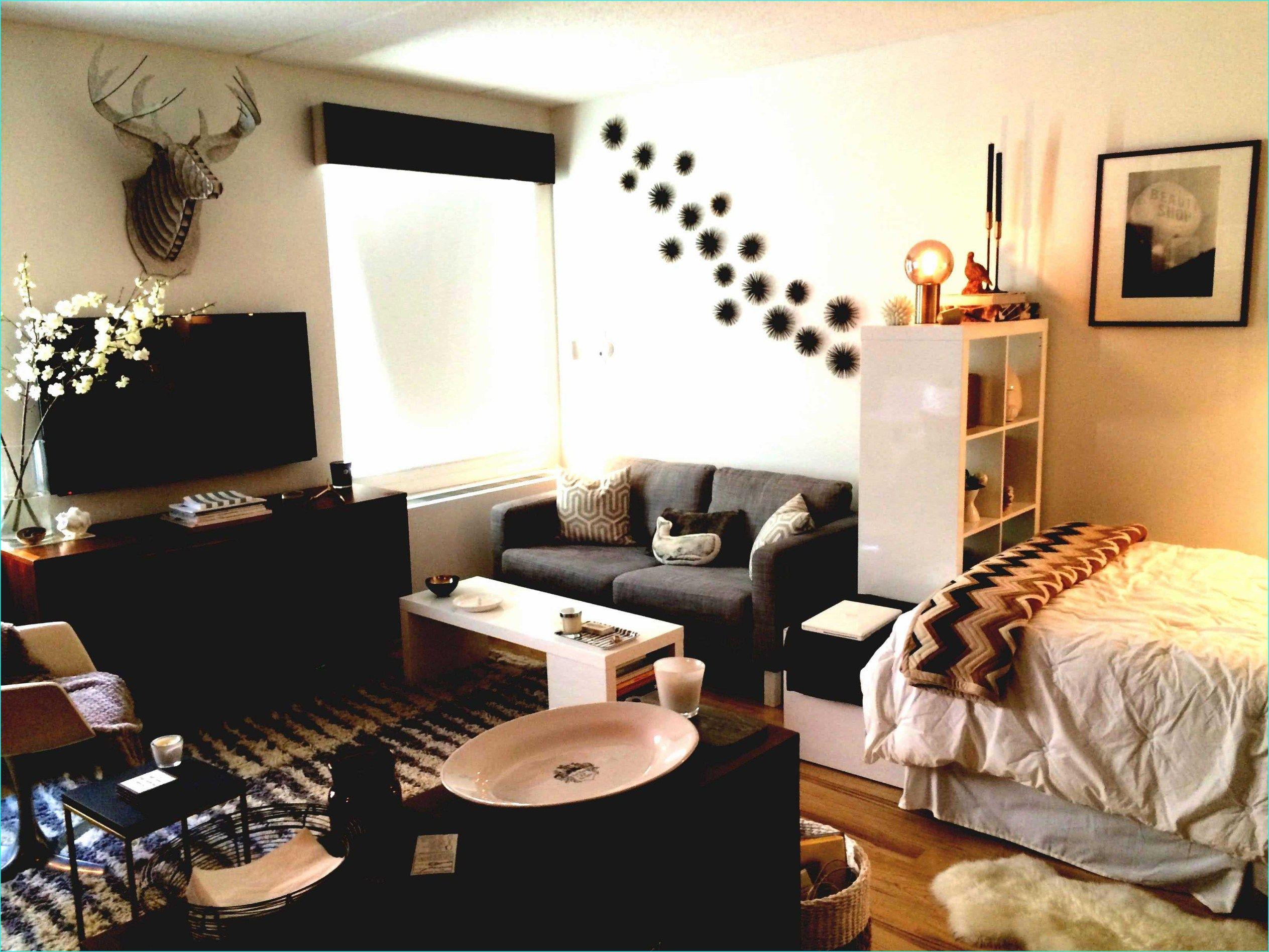 44 Cozy Extra Small Studio Apartment Ideas | Apartment ...