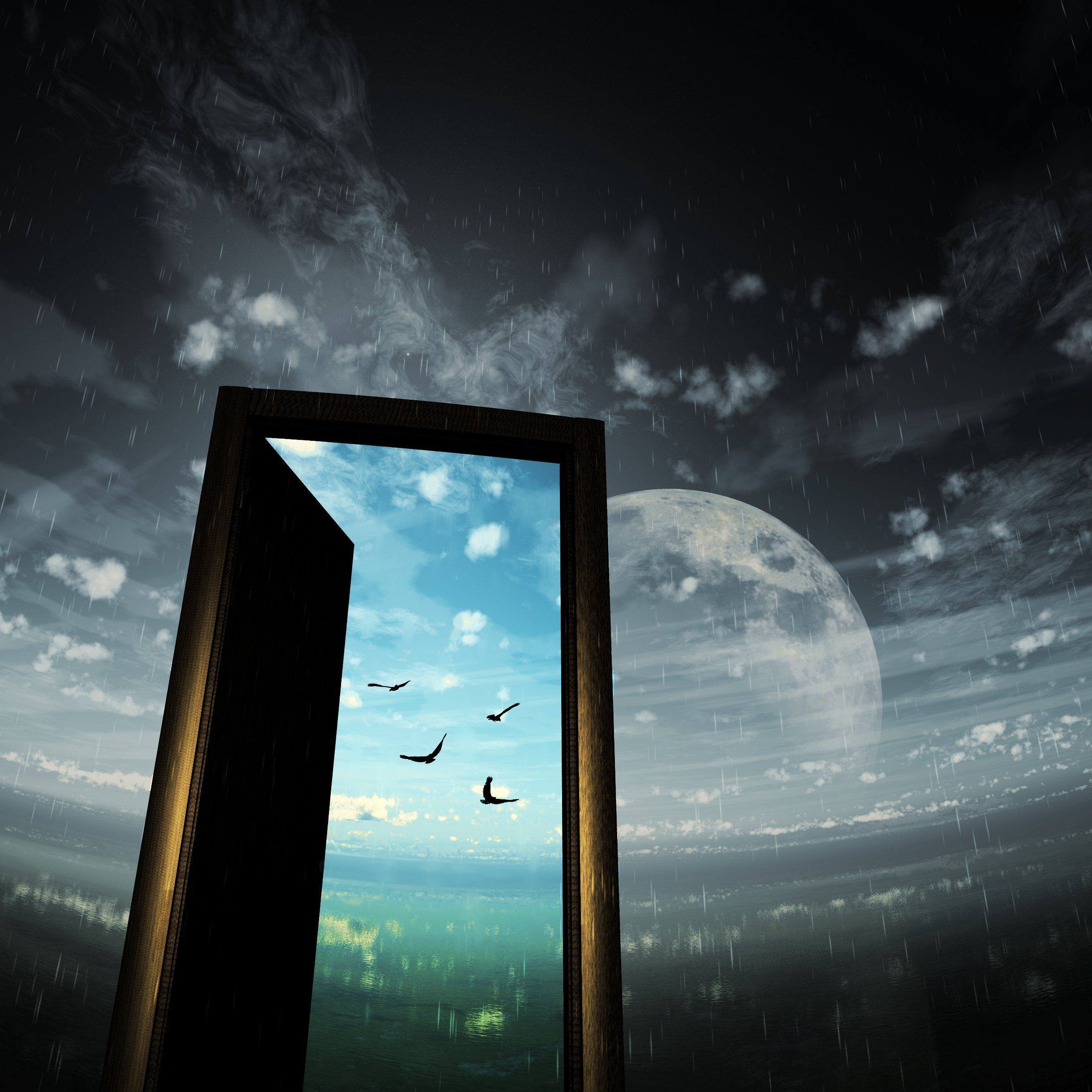 Image result for sky door