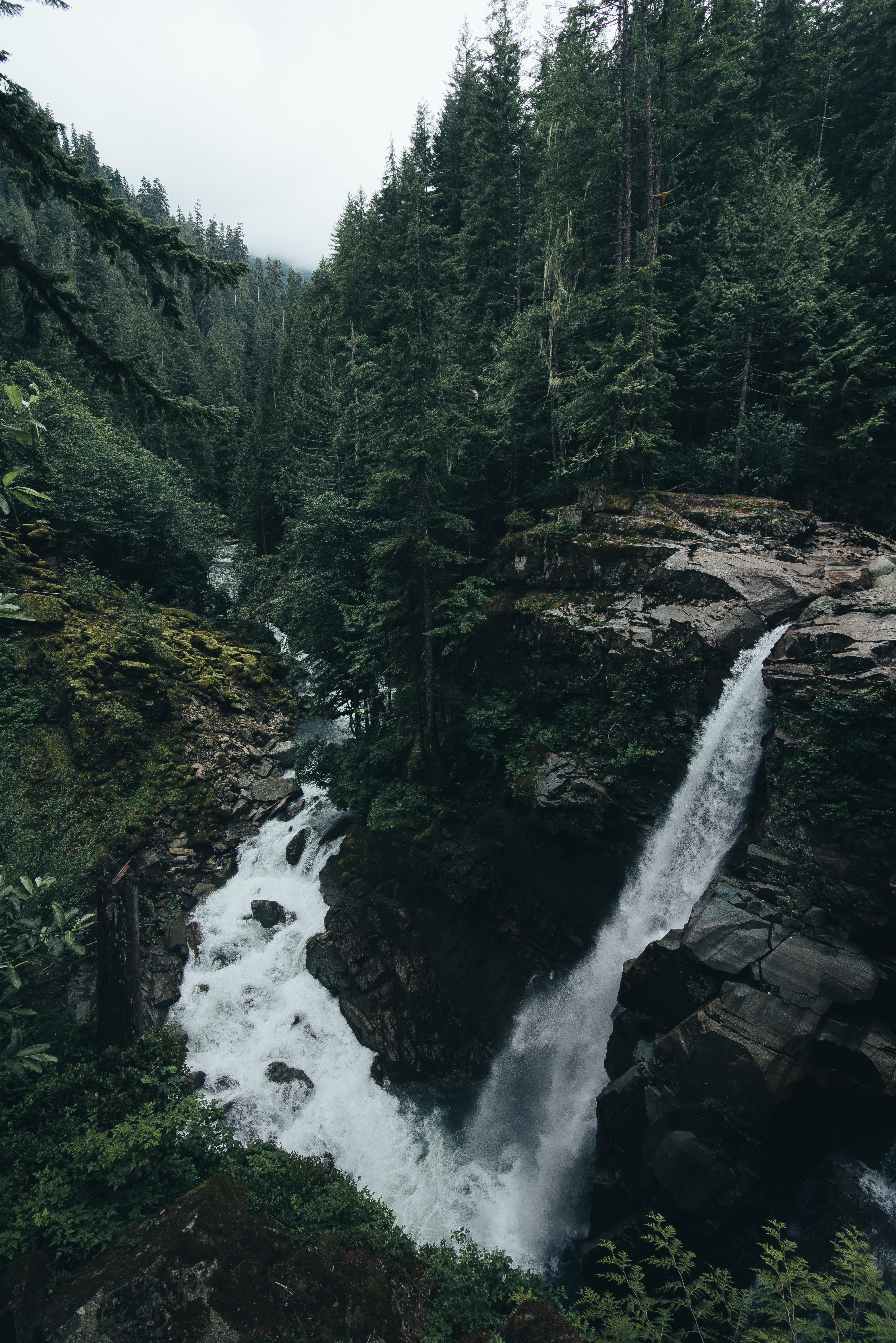 Photo of An extremely unique looking waterfall hidden away in the forests of Washington S…
