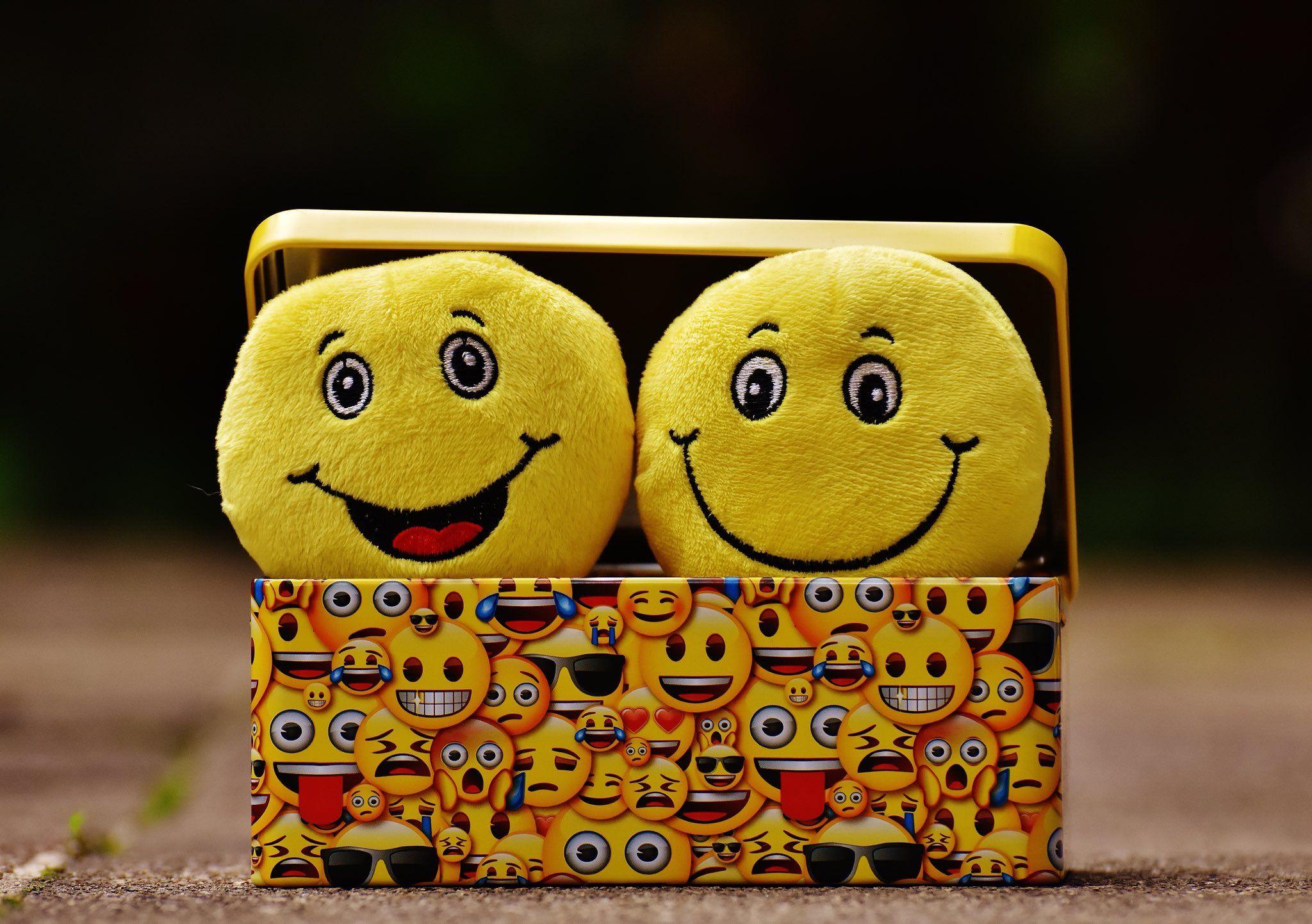 Mvng Cmpny Studio Ca On Twitter Whatsapp Dp Images Ways To Be Happier Whatsapp Dp