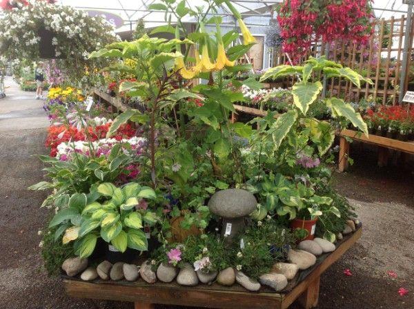 Terra Gardens Nursery U0026 Bark, Salem OR Great Display Using Stones