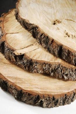 Naturals Florals Tree Slices Wood Slab Tree Slab