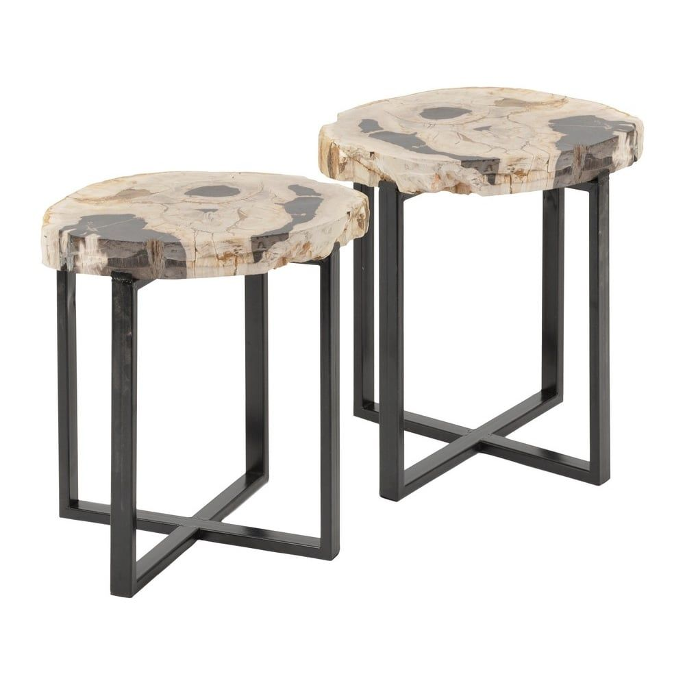 Image result for petrified wood furniture with images