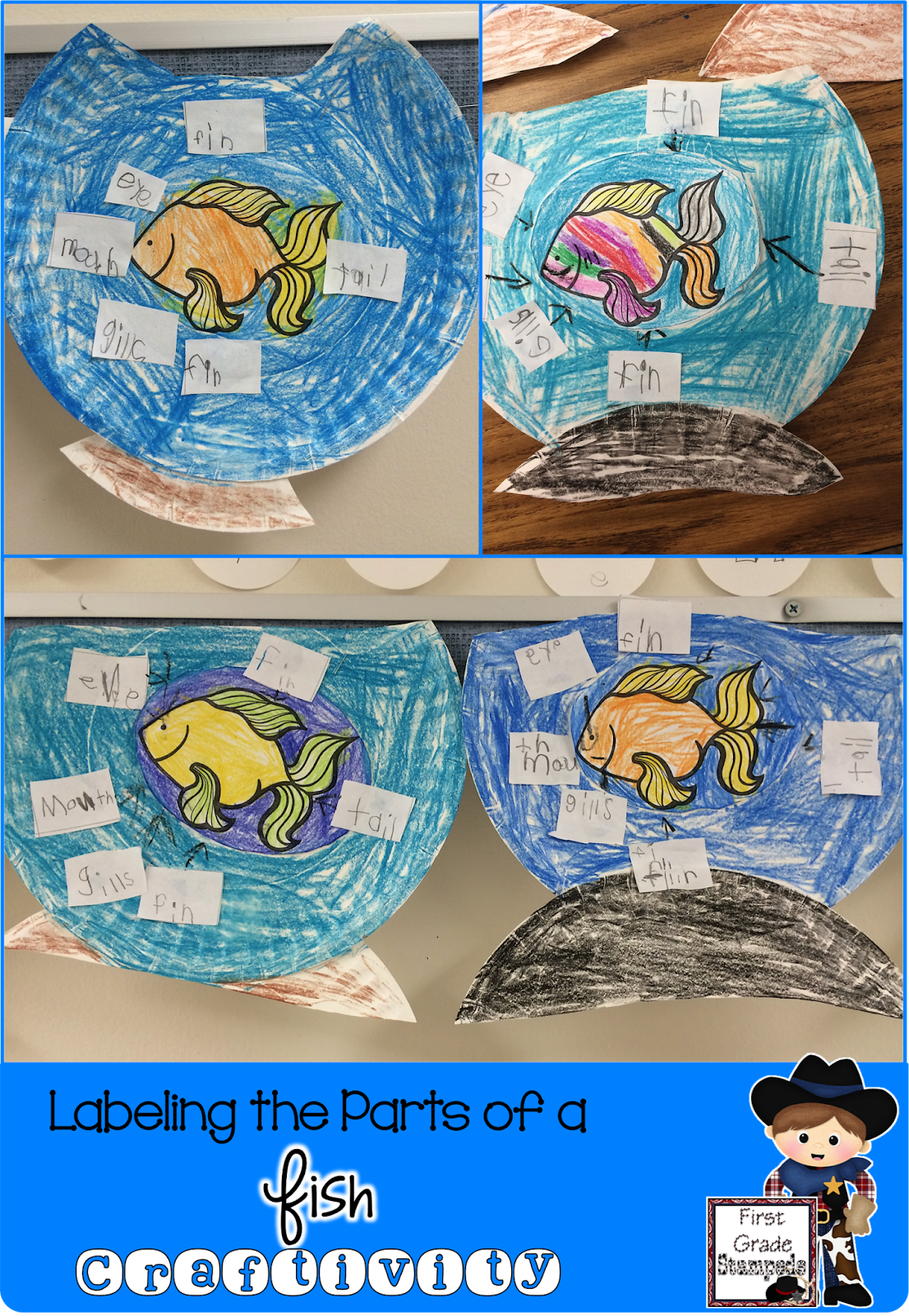 What A Fun Paper Plate Fish Craft For Kids To Study The