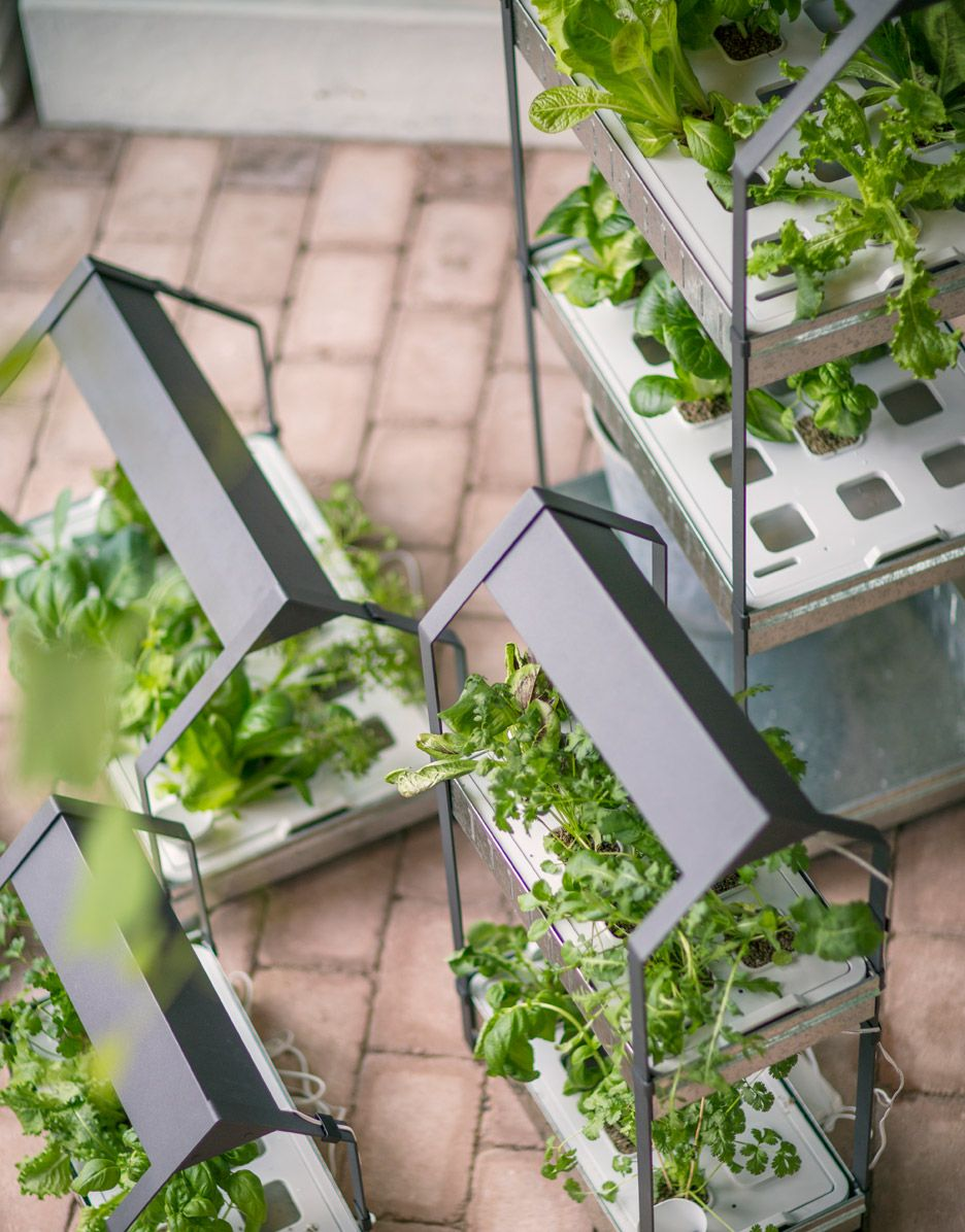 Ikea Introduce A Hydroponic Indoor Gardening Kit Home