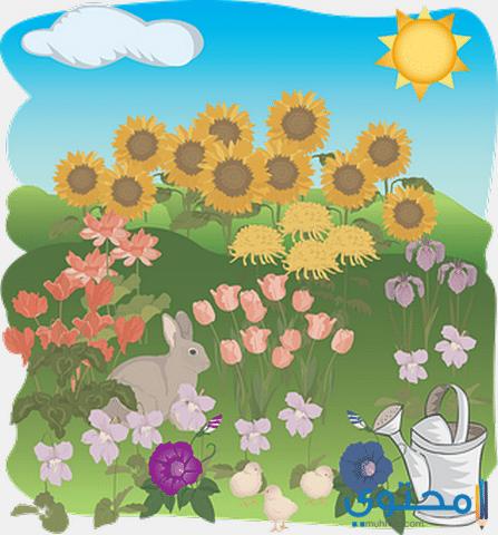 موضوع تعبير عن فصل الربيع Muhtwa Com Summer Flowers Garden Summer Flowers Flower Tops