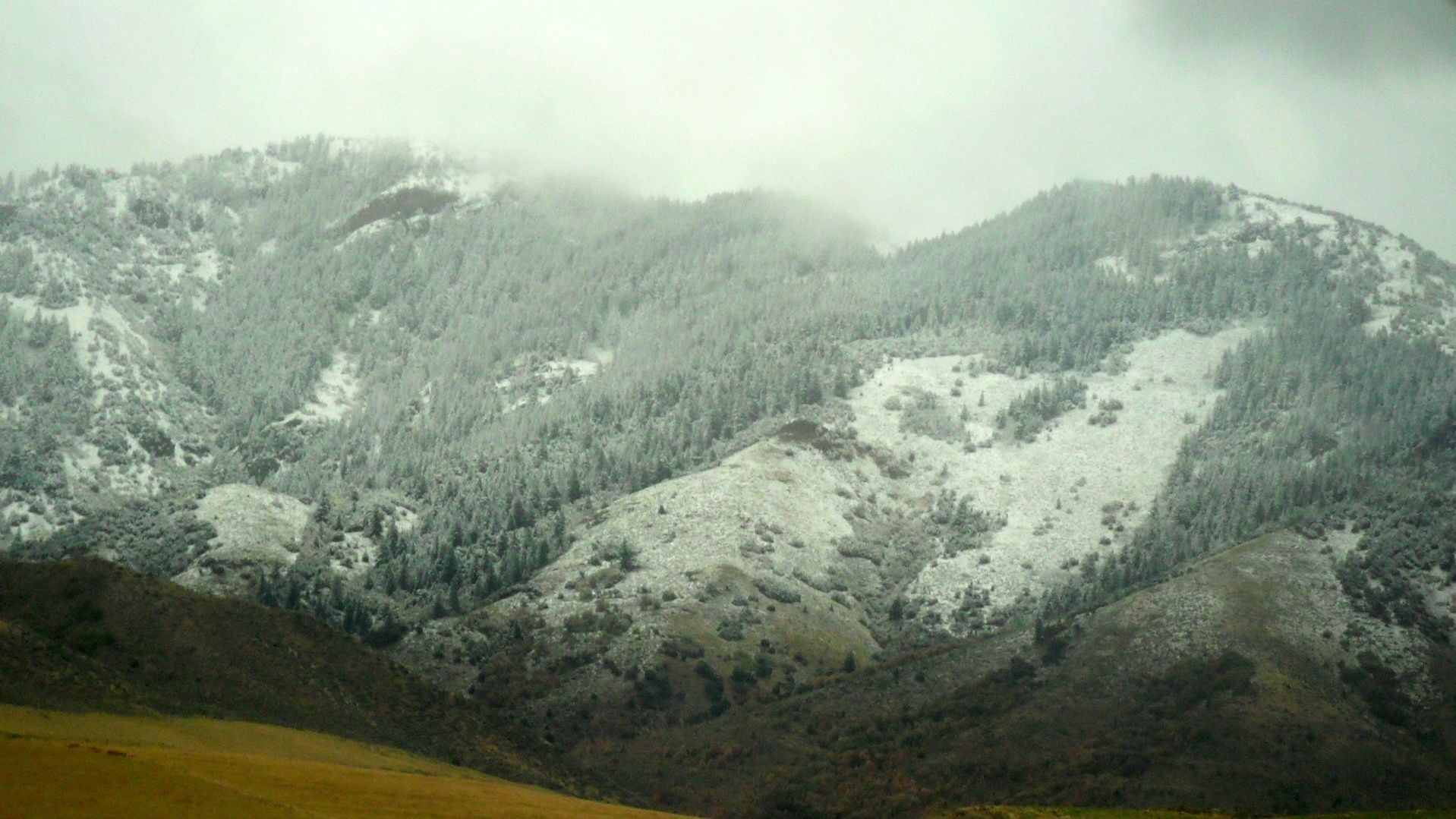 I TOOK THIS PICTURE ON THE WAY TO THE SALT LAKE AIRPORT