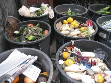 'Reduce your waste' by Flo Scott for Permaculture Magazine