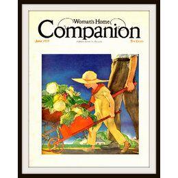 Using Swiss Chard As A Companion Plant Doityourself Com 400 x 300