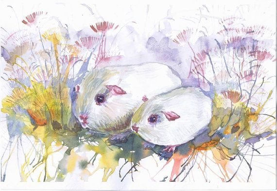 Guinea Pigs Watercolor Painting Cavy Wall Decor Animal Art Print