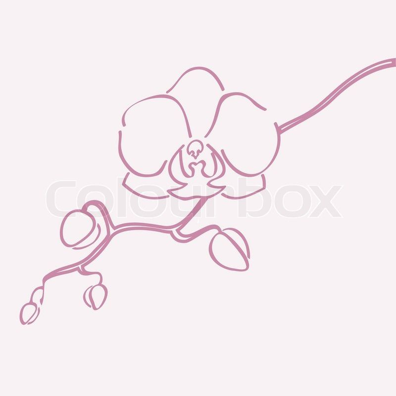 Gallery For > Yellow Orchid Tattoo   { Wall Art ...