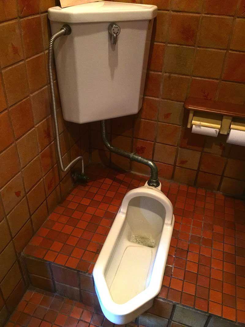 Japanese toilet tips - How to use the toilets in Japan with pictures ...