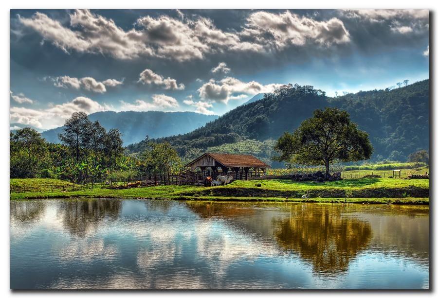 Schroeder Santa Catarina fonte: i.pinimg.com