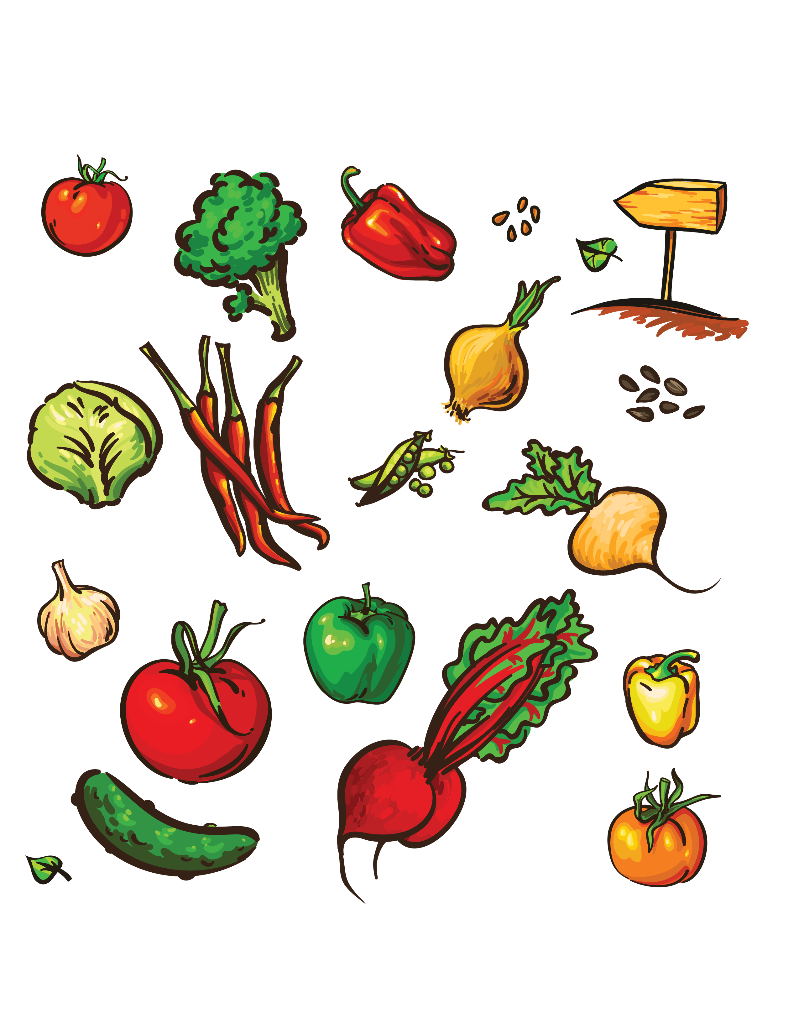 Cognitive puzzles about vegetables and fruits 61