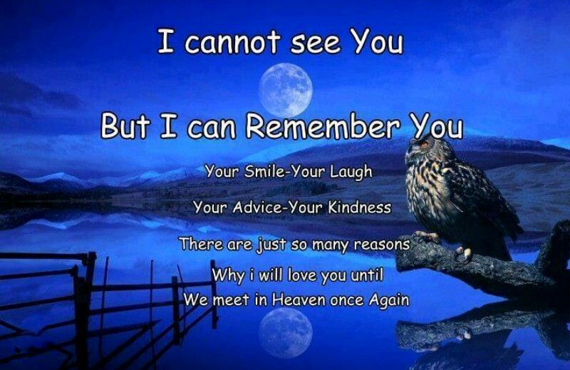 Missing My Dad In Heaven Quotes
