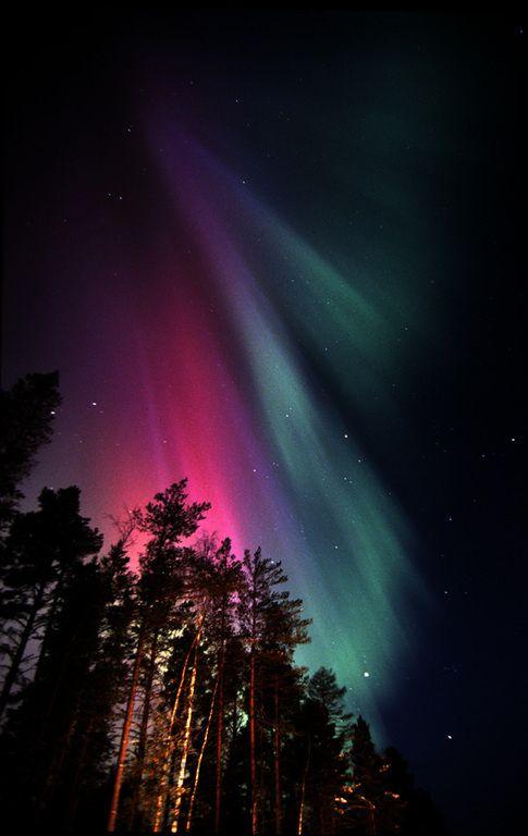 Lapissa näkyy hyvin paljon hienoja revontulia. Revontulet koostuvat valoilmiöstä joita näkee yötaivaalla. Valoilmiöitä näkyy enemmän mitä kauemmaksi päiväntasaajaa mennään. Revontulet ovat Suomen kauneipia taivas ilmiöitä.