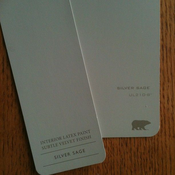 Not So Silver Sage Silver Sage Paint Paint Colors For Living