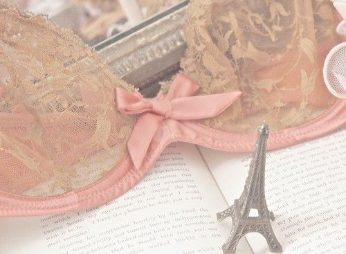 lacey bra and eiffel tower