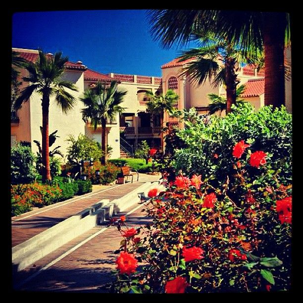 The Well Kept Gardens Of Santa Cruz Suites At California Beach Resort On Costa Del
