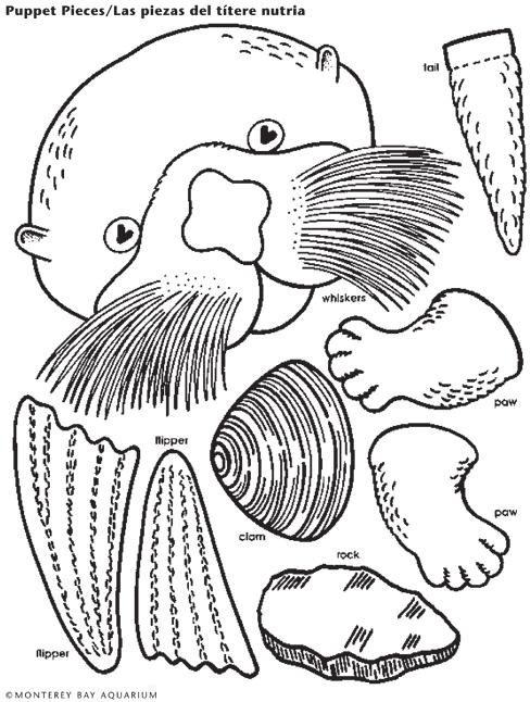 Sea Otter Lunch Bag Puppet | school-july | Pinterest | Nutrias ...