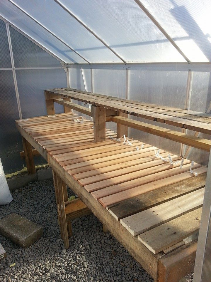 My diy greenhouse shelf made from pallets and bunky boards ... Raised Bed Greenhouse Table Design on raised bed aquaponics, raised bed plans, raised bed greenhouse growing, raised bed kits,