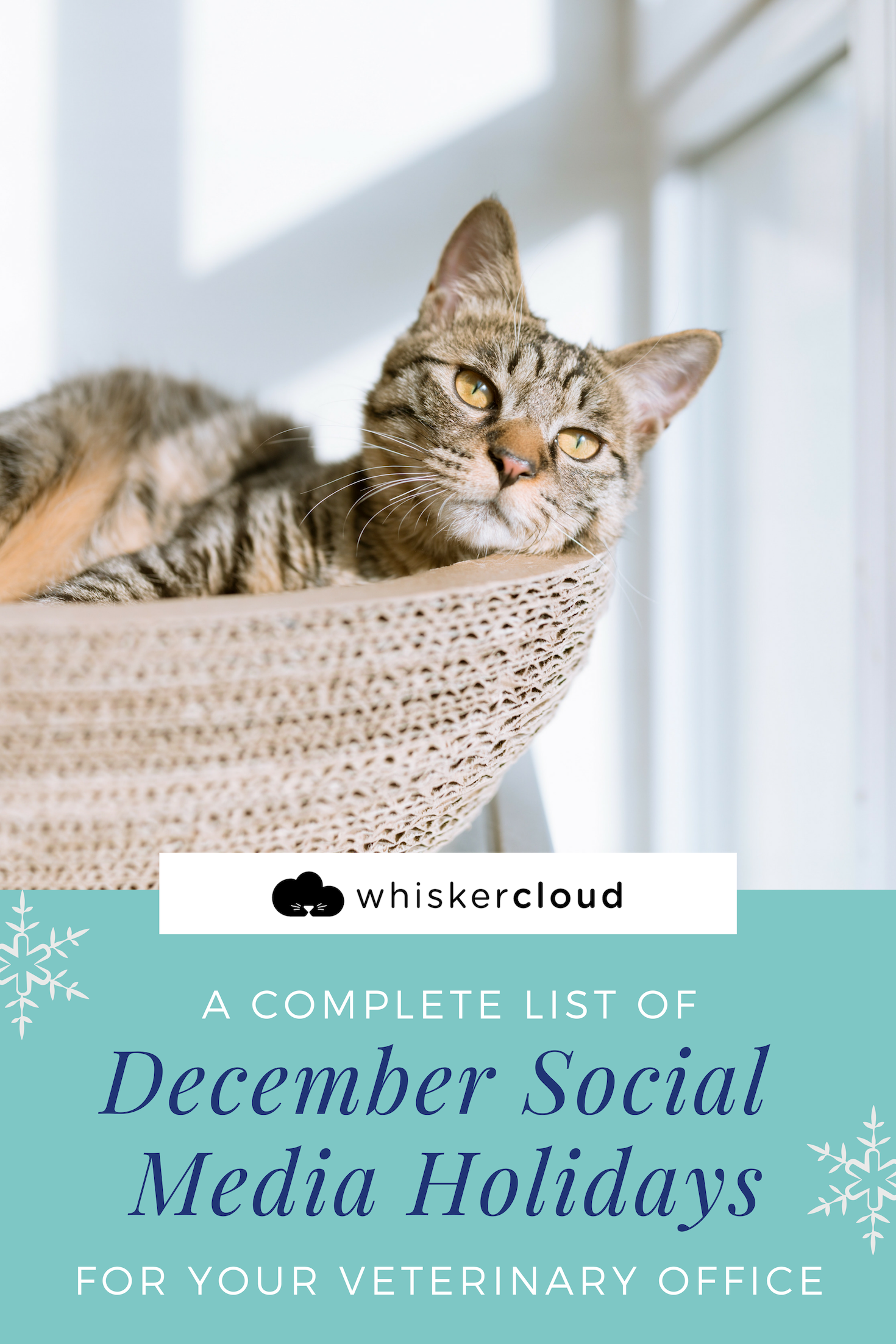 Complete List Of Social Media Holidays For Veterinary Hospitals Veterinary Hospital Veterinary Pet Day