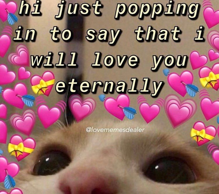 Dear Love I Love You Tag Your Love Tags Wholesomememe Wholesomemes Wholesomeloveme Love You Cute Cute I Love You Cute Love Memes