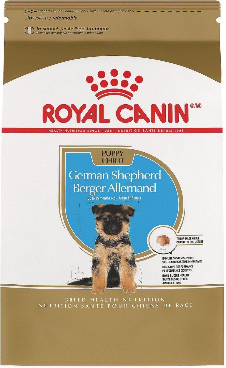 52513_main_ac_sl1500_v1550511566_1jpg german shepherd