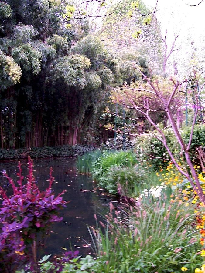 Claude Monet Garden Giverny France Painting by Chitra Ramanathan