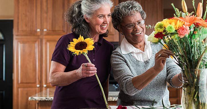 Senior companionship in raleigh nc senior care home