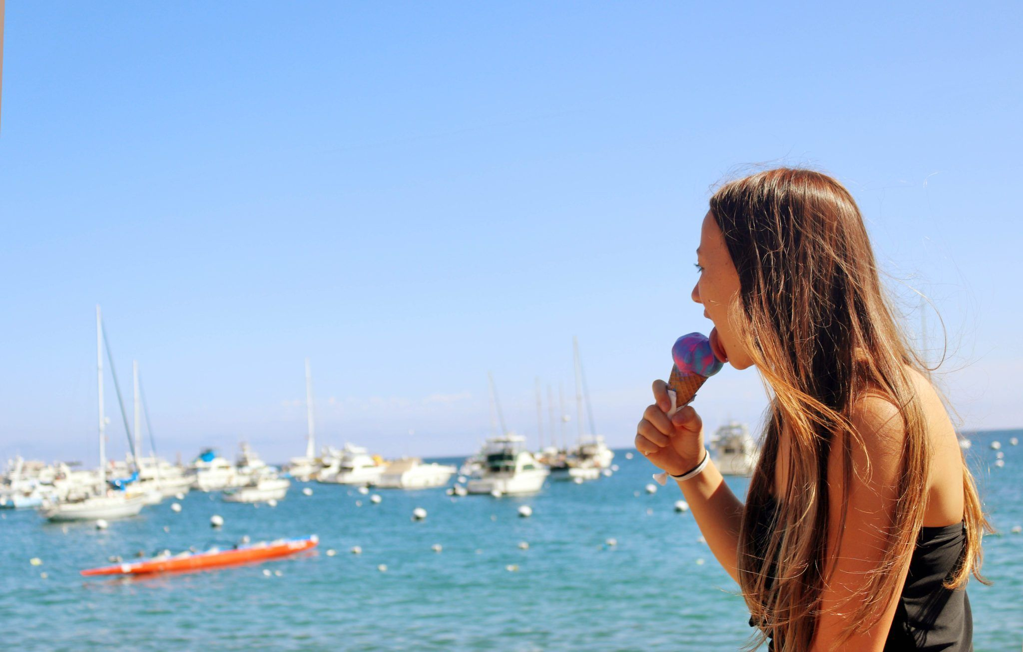 How To Spend One Day On California S Catalina Island Simply Wander Catalina Island Day Trip Catalina