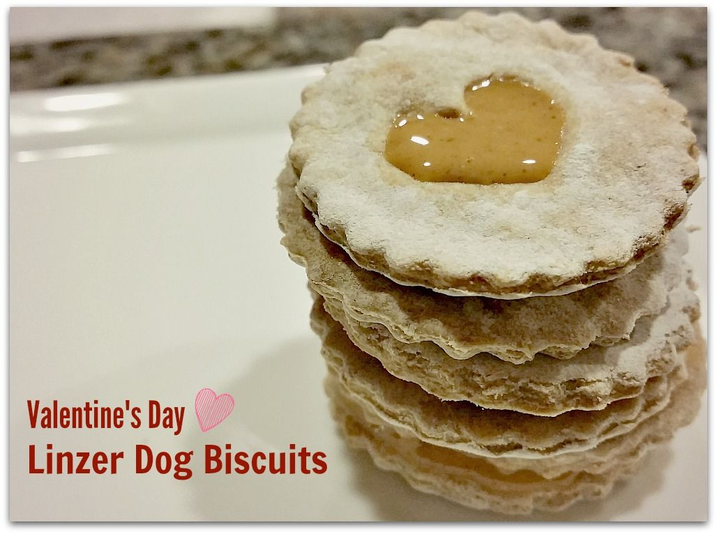 Heart-Shaped Linzer Dog Biscuits for Valentine's Day — Morsels & Moonshine