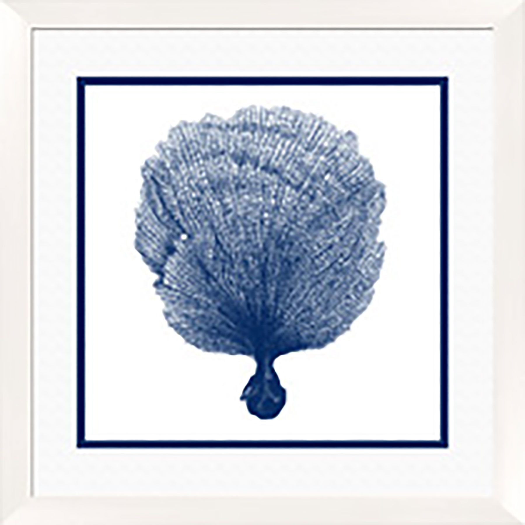 Coral i framed graphic art graphics art and blue