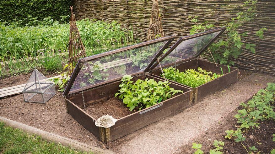 Hemma hos trädgårdsingenjören Malin Strand.