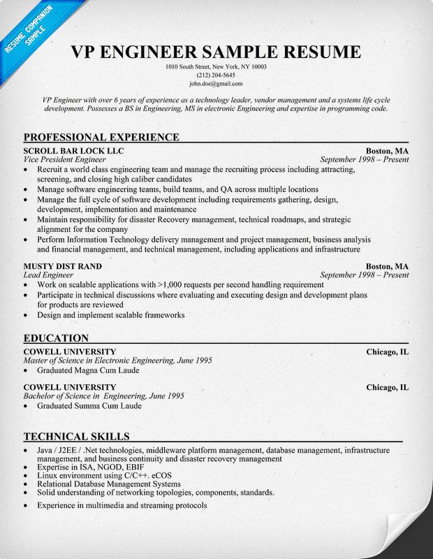 VP #Engineer Sample Resume (resumecompanion) Resume Samples - petroleum engineer sample resume