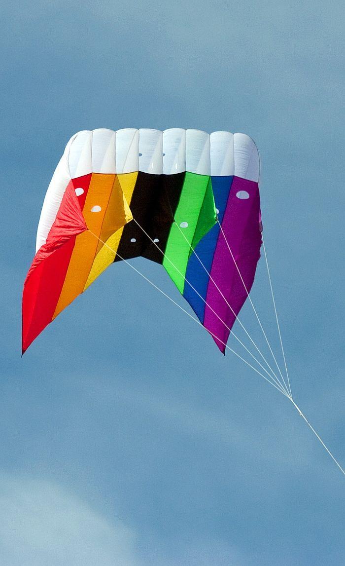 Colorful Kite Vozdushnyj Zmej