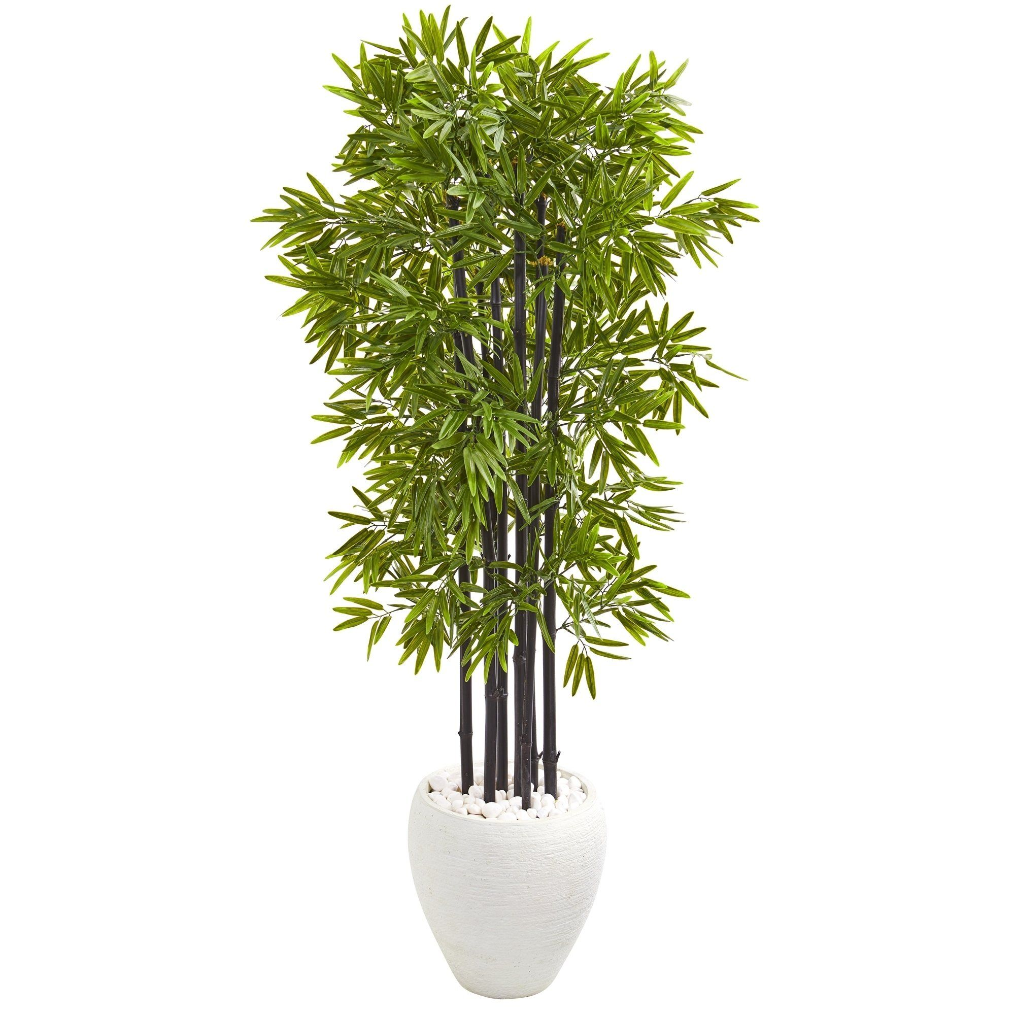 5 bamboo artificial tree with black trunks in white