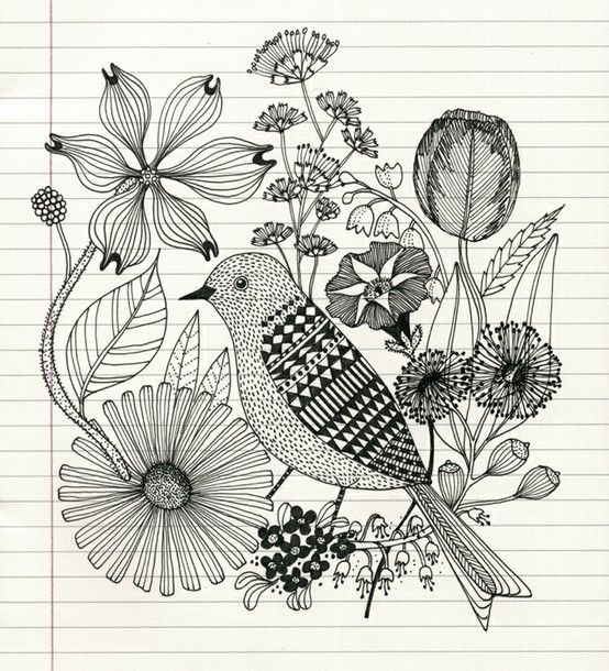 Pencil Sketch Of Bird And Flowers Food Drink That I Love