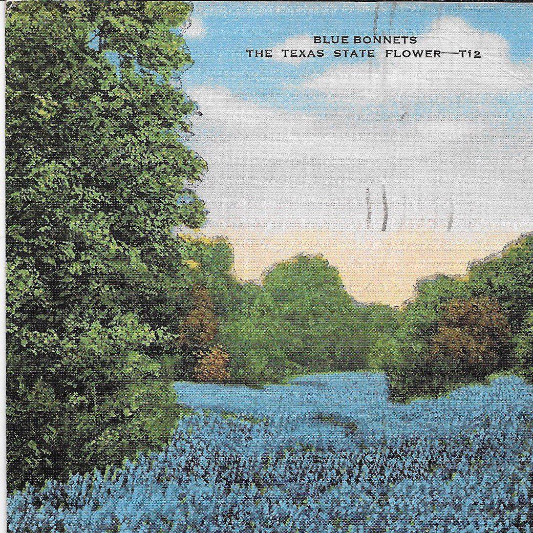 Mailed 1951 linen postcard with cancelled stamp blue